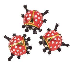1305 Ladybird
