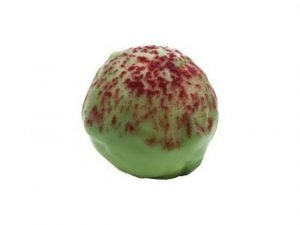133100 Limetryffel i Vit Choklad