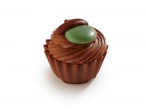EP002922 Ekollon Cupcake